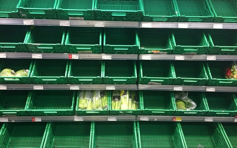 vegetables in green cartons on a shelf