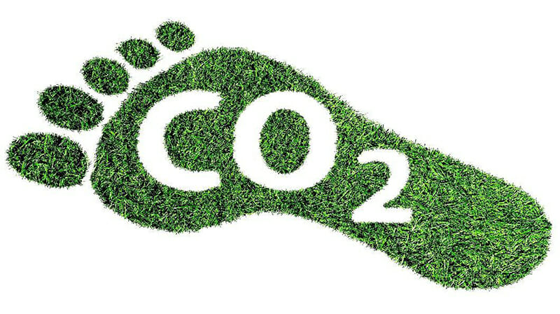 Footprint with grassy texture inside and inverse text that says 'CO2', the makeup of Carbon