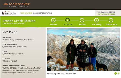 a screenshot of icebreaker's baacode page